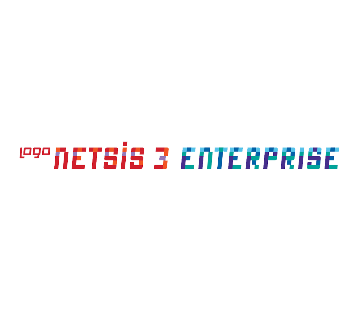 Logo Netsis 3 Enterprise