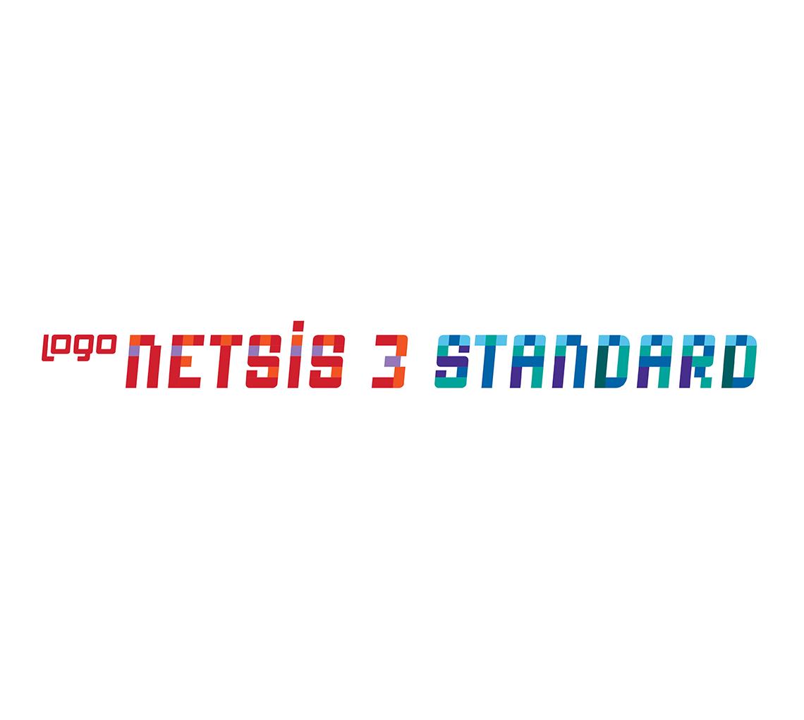 Logo Netsis 3 Standart
